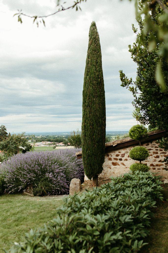 UTOPICLOVERS20200702 – EDITO Jérémie Sésanne Lajarveniere 8698 683x1024 - Un mariage élégant et végétal dans le Beaujolais