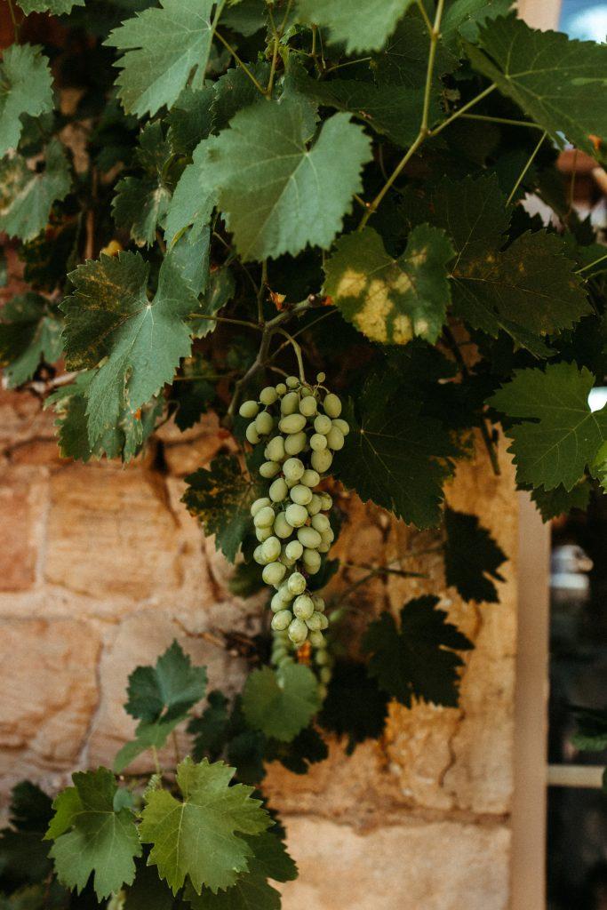 UTOPICLOVERS20200718 – MARIAGE Segolene Thomas 9730 683x1024 - Un mariage simple et joyeux au Manoir Tourieux dans le beaujolais.